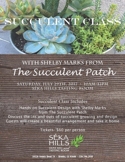 July 29th, 2017 Succulent Class